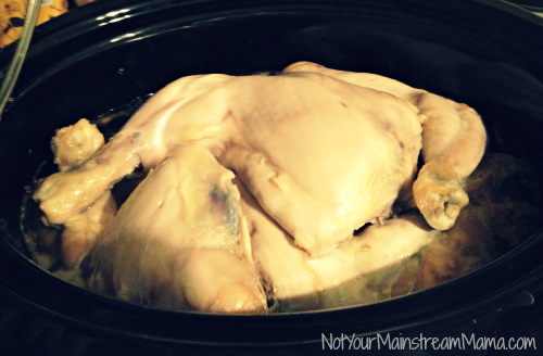 Crockpot Freezer Shredded Chicken