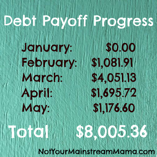 Debt Payoff Progress through May 2013
